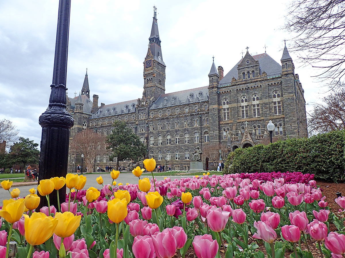 Georgetown Université Washington