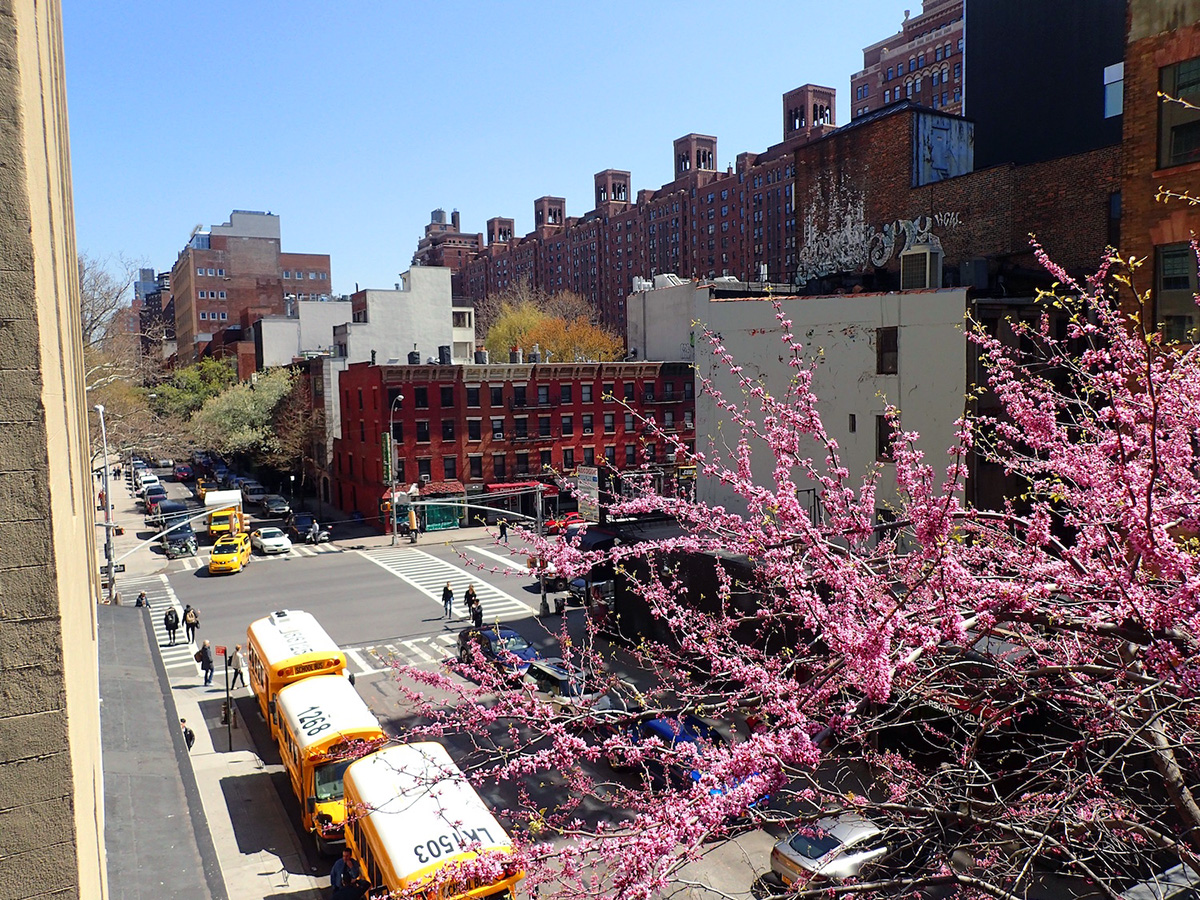 Highline Manhattan